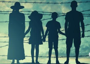migrantes verificado